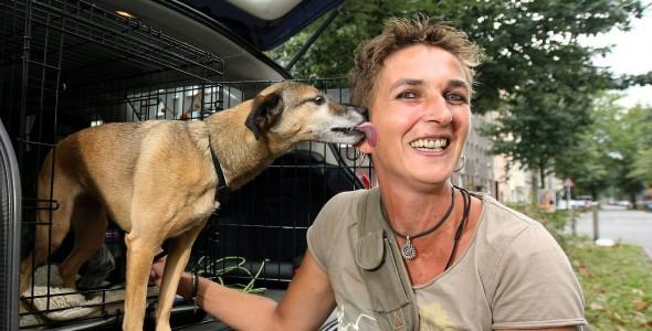 mobile Hundeschule in Dortmund