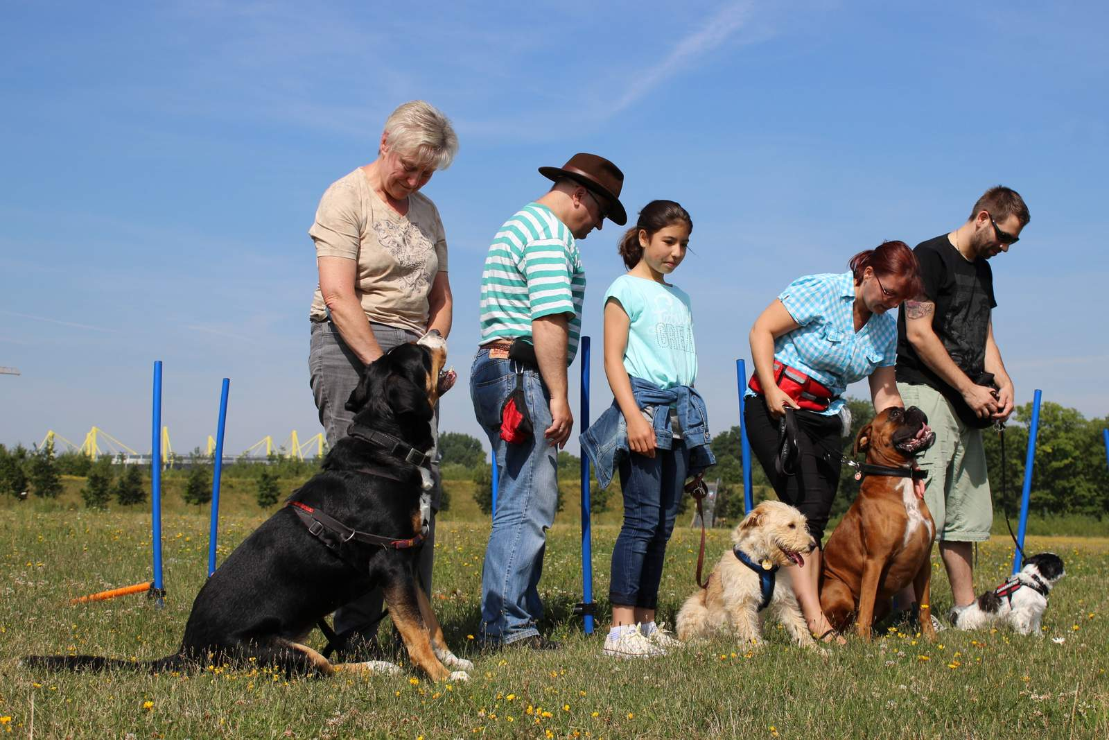 Gruppentraining,http://hundetraining-dortmund.de/