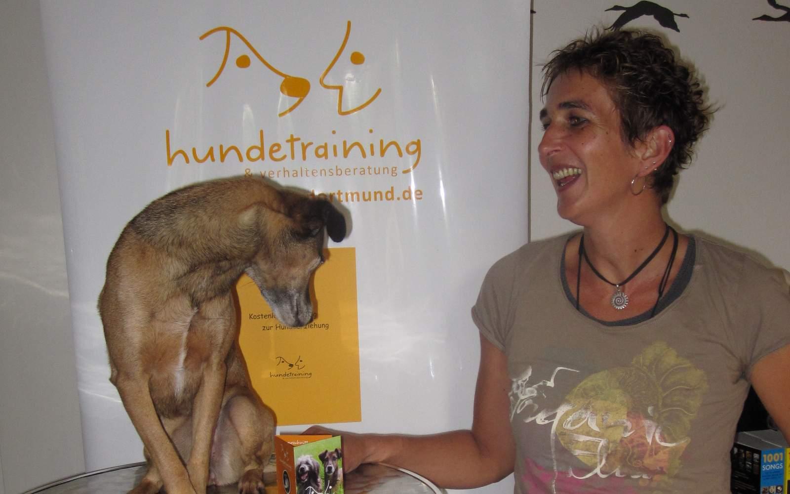 Hunde Workshops