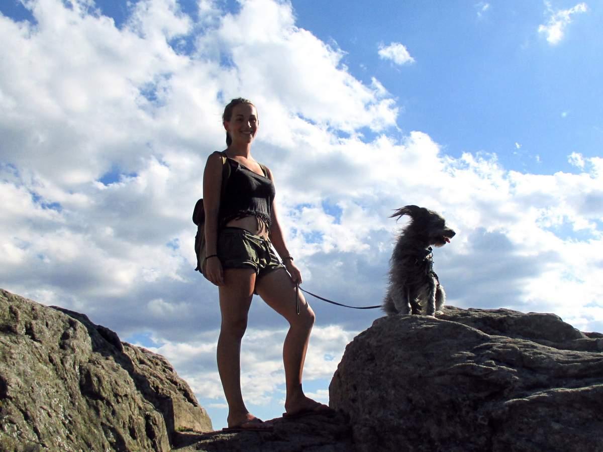 Reisen mit Hunden kann so schön sein!