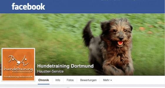 Hundetraining Dortmund Facebook Seite