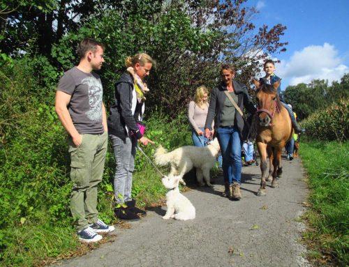 Gruppentraining heute mal mit Pony